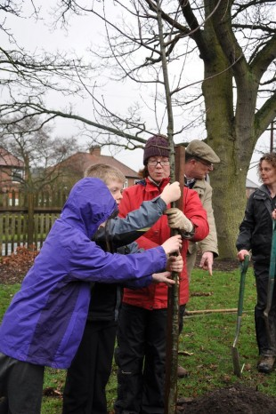 PLANTED: Pupils and teachers from Wolsingham School and Community College plant the new oak tree