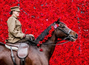 CEREMONY: Katie Yeo, from Byers Green, on her horse Tino Picture: SARAH CALDECOTT