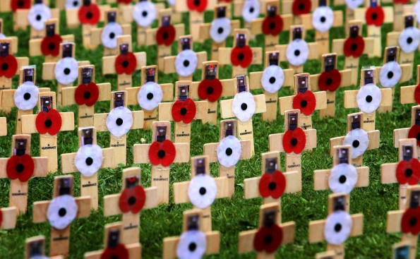 Crosses planted in remembrance